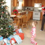 Kominsky Family Christmas 2010