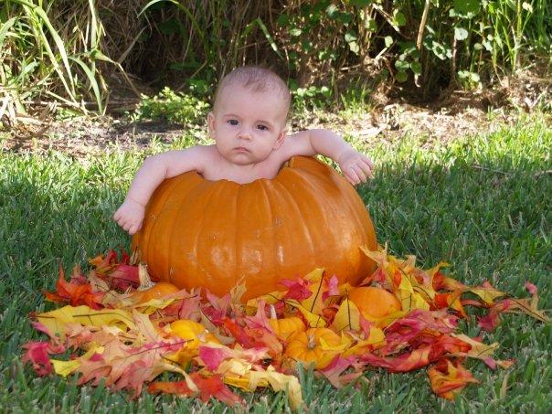 pumpkin baby 2