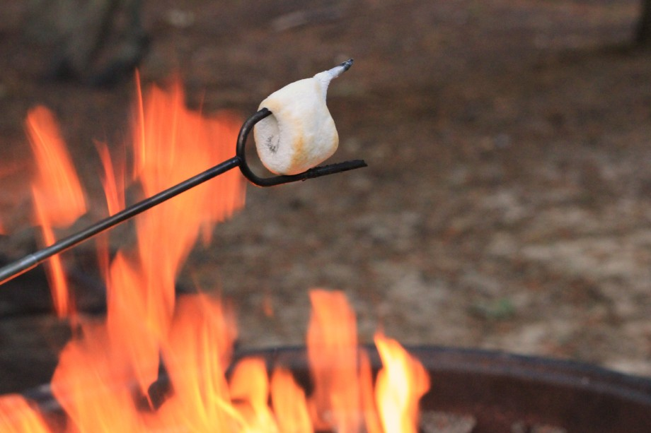 Campfire S'mores #LetsMakeSmores #CollectiveBias #ad